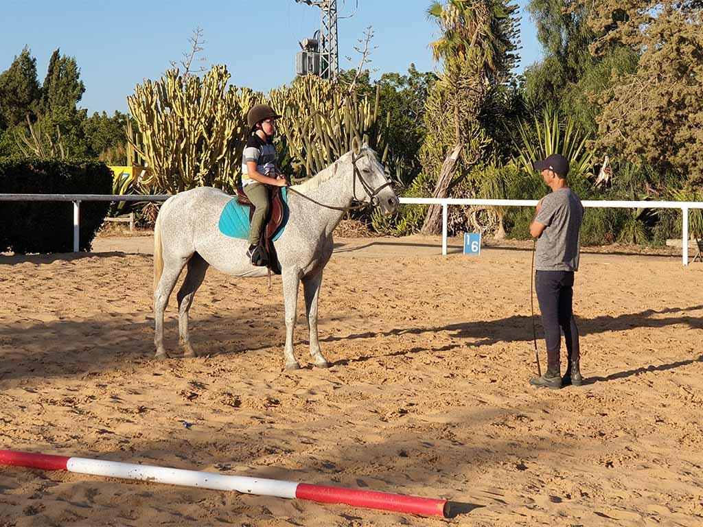 חוות סוסים טיפולית